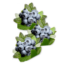 Mega Blueberries